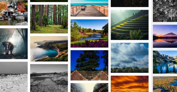 FreePhotos.cc 免費照片素材 |  相片免費下載 | CC0授權素材