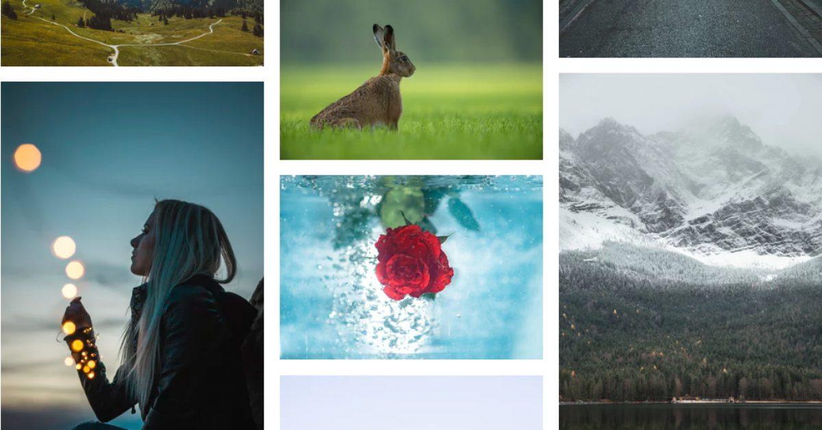 Unsplash 高清圖片 | 照片素材 | 免費高清