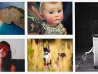 【嬰兒照片】 Albumarium 可愛嬰兒照片 | 小狗照片
