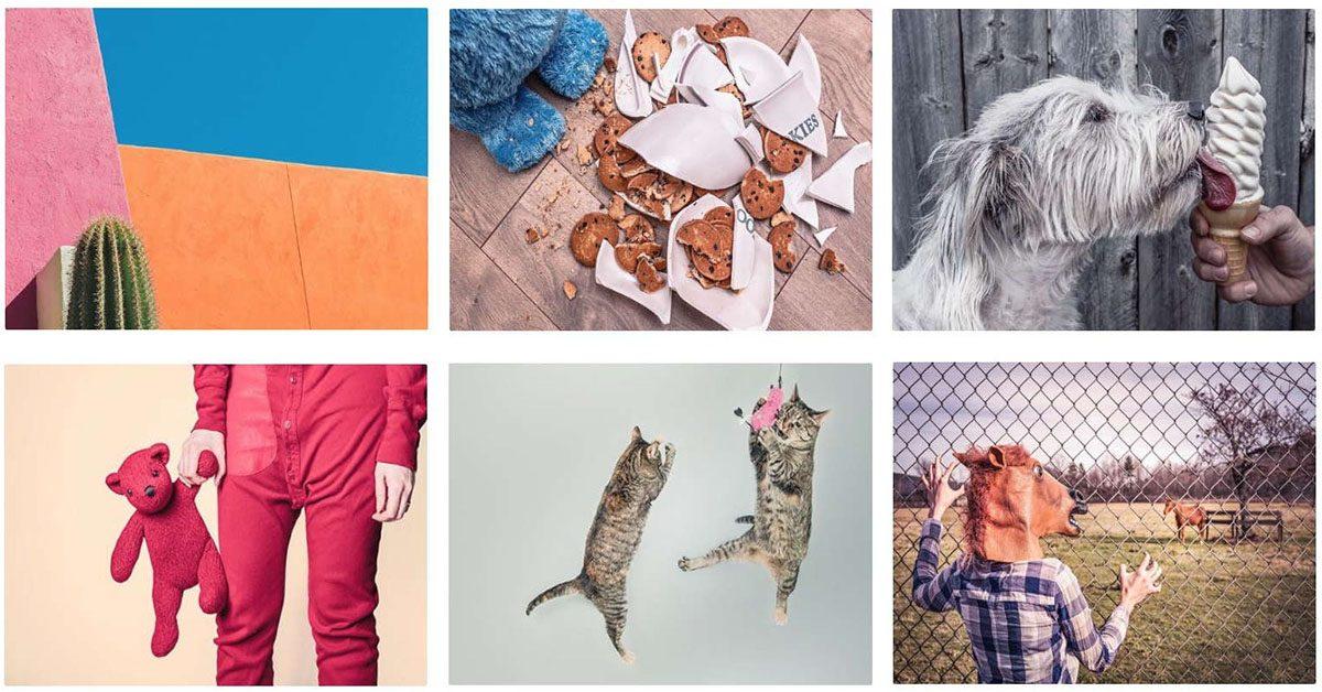【有趣圖片】Gratisography 最有趣圖片下載 | 免費人像圖