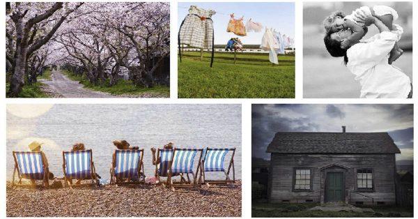 【家庭圖】Snapwire Snaps 充滿愛的家庭圖 | 大自然桌布照片