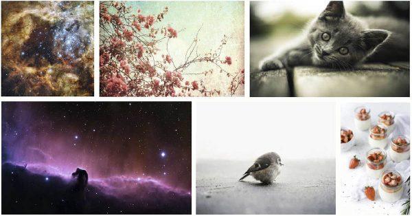 【可愛照片】PIKWIZARD 超級可愛照片下載 | 美麗星空圖片