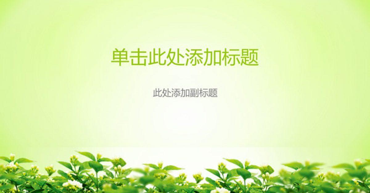 完整的綠色清爽powerpoint模板下載,共有5張的植物模板推薦主題
