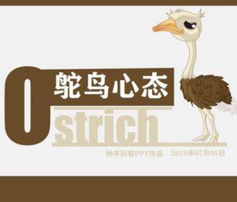 有設計感的鴕鳥心態powerpoint模板下載,共有13張的可愛鴕鳥簡報模版推薦