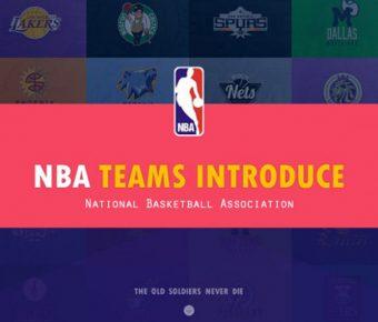 無暇的NBA球星powerpoint模板下載,共有12張的體育運動推薦範例