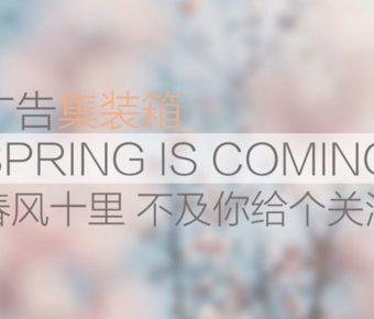 最好的春天powerpoint模板下載,共有8張的自然風景模板樣式