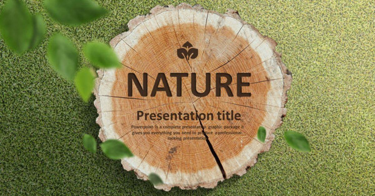 優秀的木紋powerpoint模板下載,共有20張的植物模板模版推薦