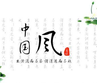細緻的簡約荷花powerpoint模板下載,共有19張的中國風模版推薦