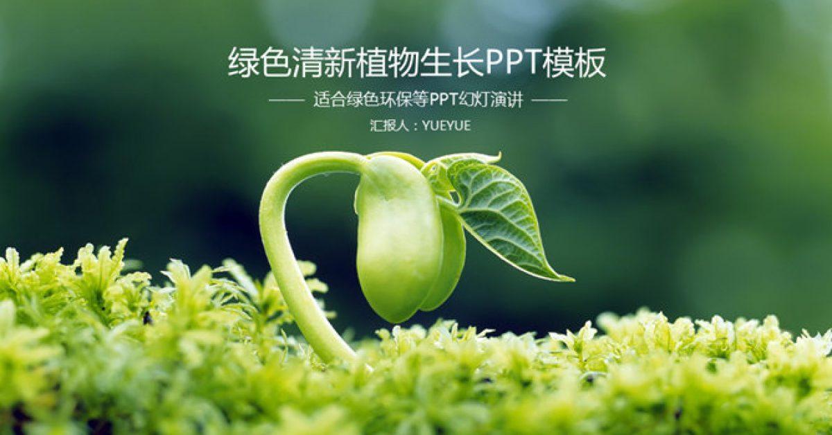 完整的植物種植powerpoint模板下載,共有25張的植物模板免費套用