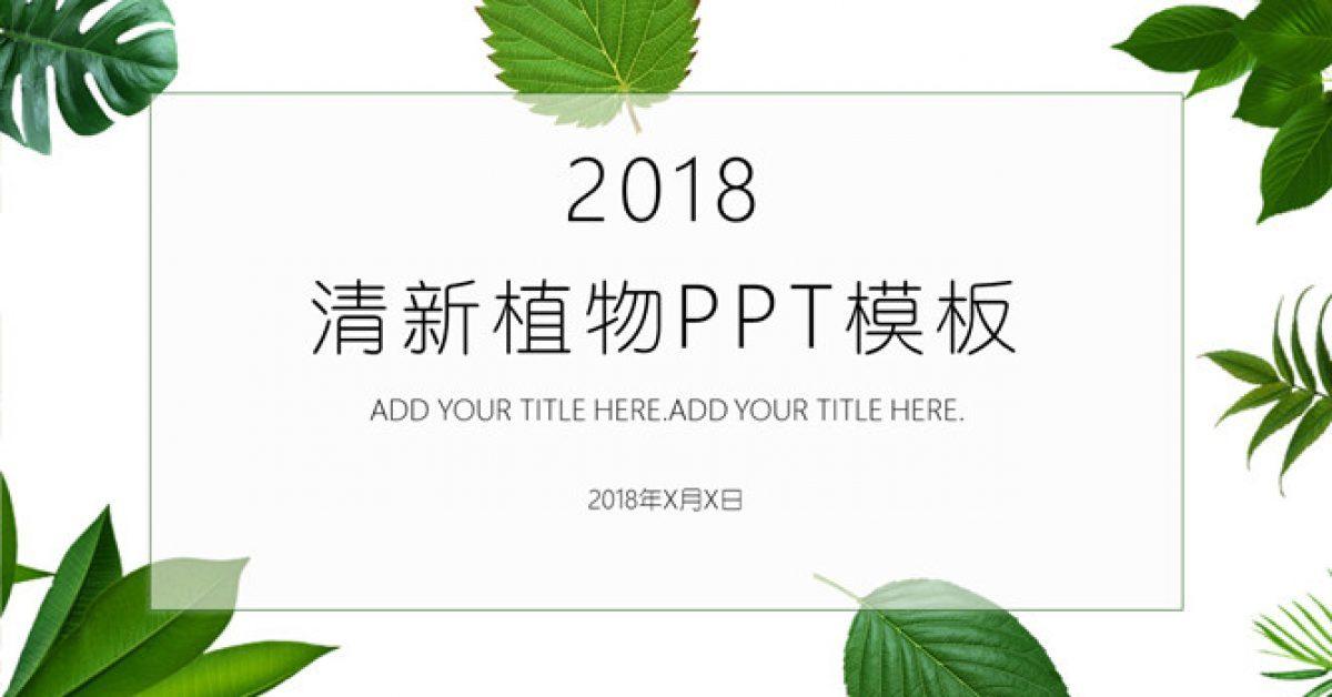 完整的可愛綠葉powerpoint模板下載,共有24張的植物模板免費推薦